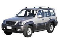 Коврики из экокожи 3D  Hyundai Terracan 2001 - 2006